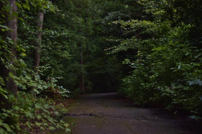 Springfield Path