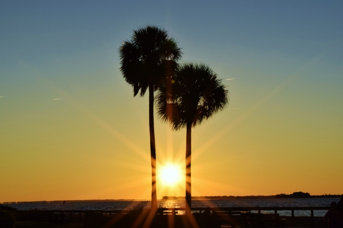 Sunset_Between_Palm_Trees