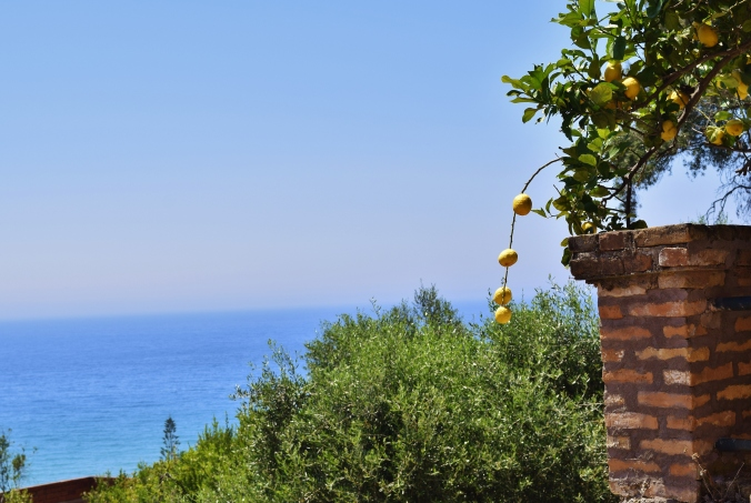 Lemons Corfu